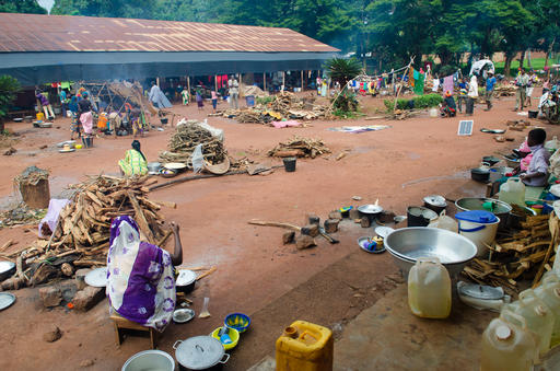 Consequences of war for civilian population in Bangassou