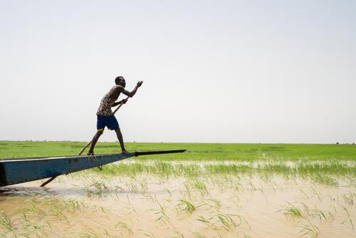 A boatman on the River Niger – Timbuktu region, Mali, 20 September 2020