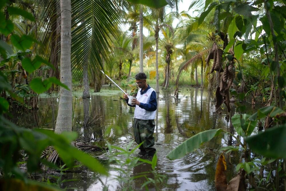 MSF biologist Melfran Herrera searches for Anopheles mosquito larvae in a swamp in Sucre, northeast Venezuela