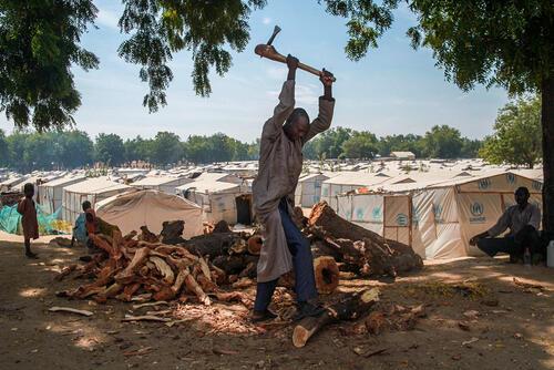 Chopping firewood – Bama camp, Nigeria, 7 December 2019
