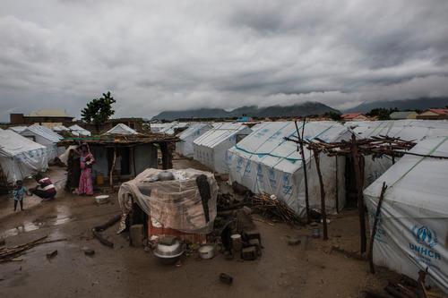 Crisis in Borno, Nigeria