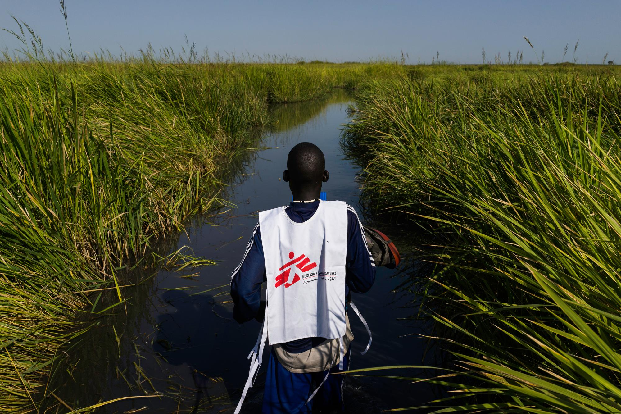 An MSF worker stands with his back to the camera in a channel of water surrounded by tall grass.