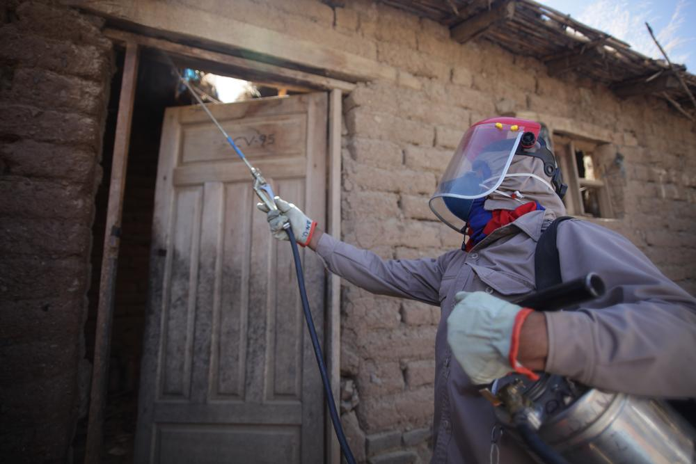 Vector control is part of MSF's work on Chagas in Bolivia