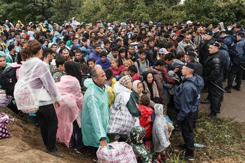 Refugees In Bapska, Serbia