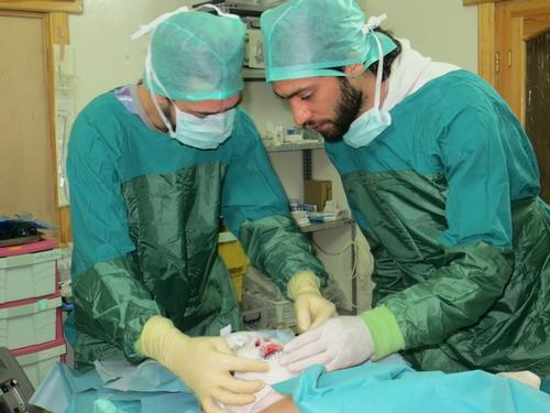burn patients treated in one MSF hospital in North Syria.