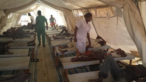 Bauchi cholera