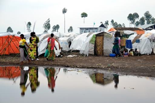 Displaced populations in North Kivu