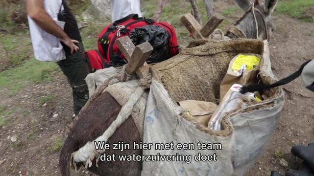 Haiti: Donkey Mobile Clinics | Web Clip | DUTCH