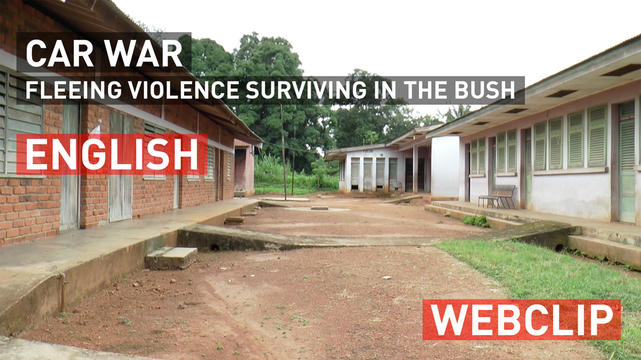 CAR war – fleeing violence surviving in the bush | English