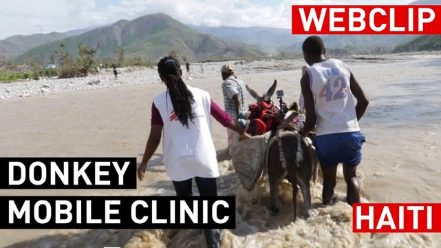 Haiti: Donkey Mobile Clinics | Web Clip | English