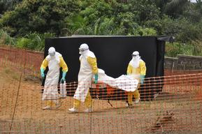Ebola toll rises in Guinea