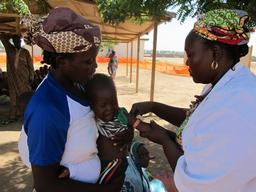 MSF provides medical assistance to displaced and victims of violence in north Cameroon.