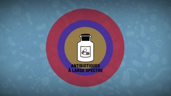The 'Mini-Lab' project to help combat antiobiotic resistance.