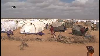 A Year in Focus 2011-12. Somalia