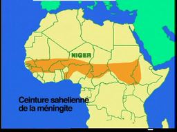 VIDEO:  Niger, Epidemic of the Sands (FR)