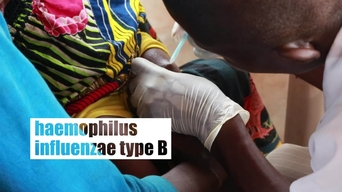 Central African Republic: multi-antigenes vaccination campaign