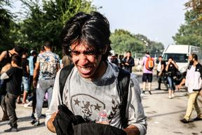 Clashes between refugees and the hungarian police - Serbia Hungary border