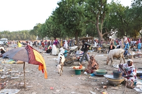 Hepatitis E Outbreak, Chad, Dec 2016.