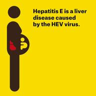 Animation: Hepatitis E Cases (EN)