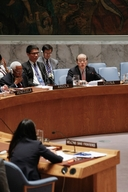 Dr Joanne Liu at UNSC meeting