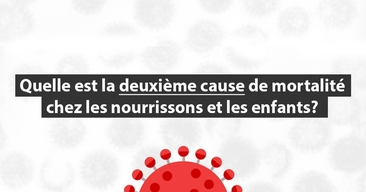 Rotavirus - Banner question French