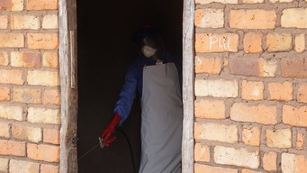 Chad : Intra Residential Spraying