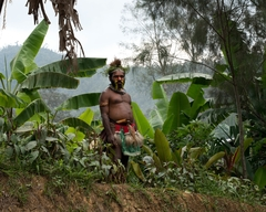 """RETURN TO ABUSER"" - Family and Sexual Violence Papua New Guinea"