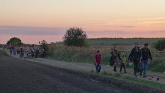 Refugees in Röszke, Hungary-Serbia border (web quality)