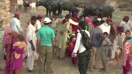 MSF distribute supplies to villages in Pakistan effected by floods